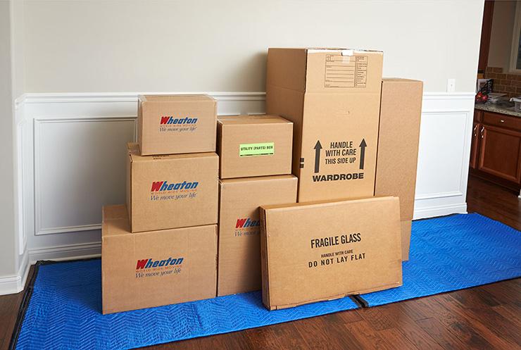 EP Easy Storage boxes