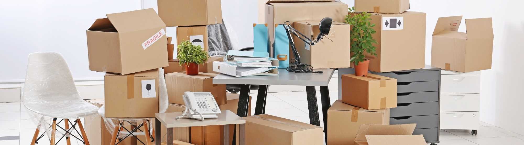 Business Storage for Office