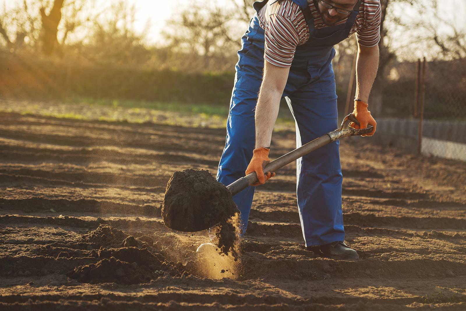 Un homme utilise des outils de jardin dans sa cour