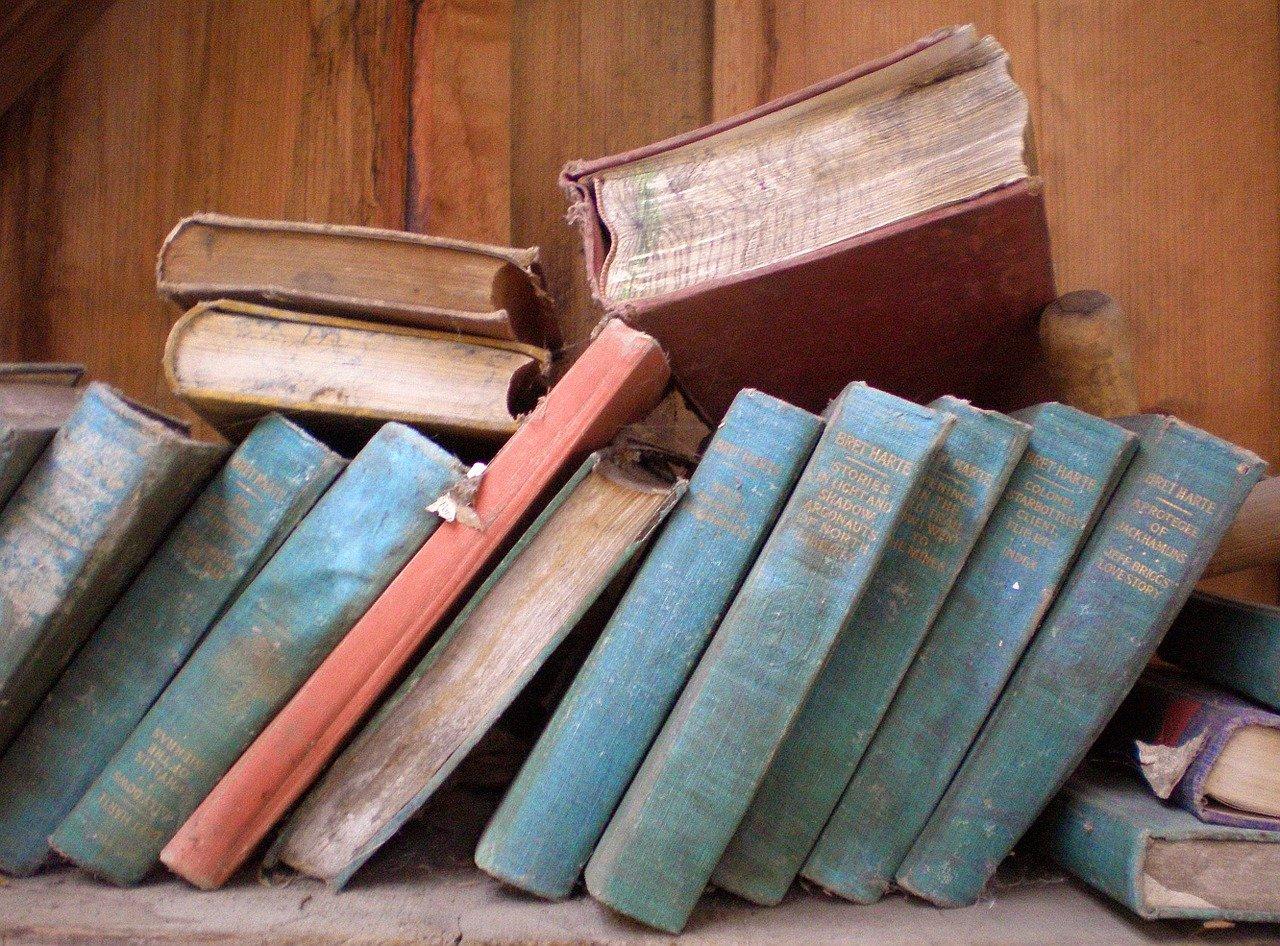 I-45 Self Storage books