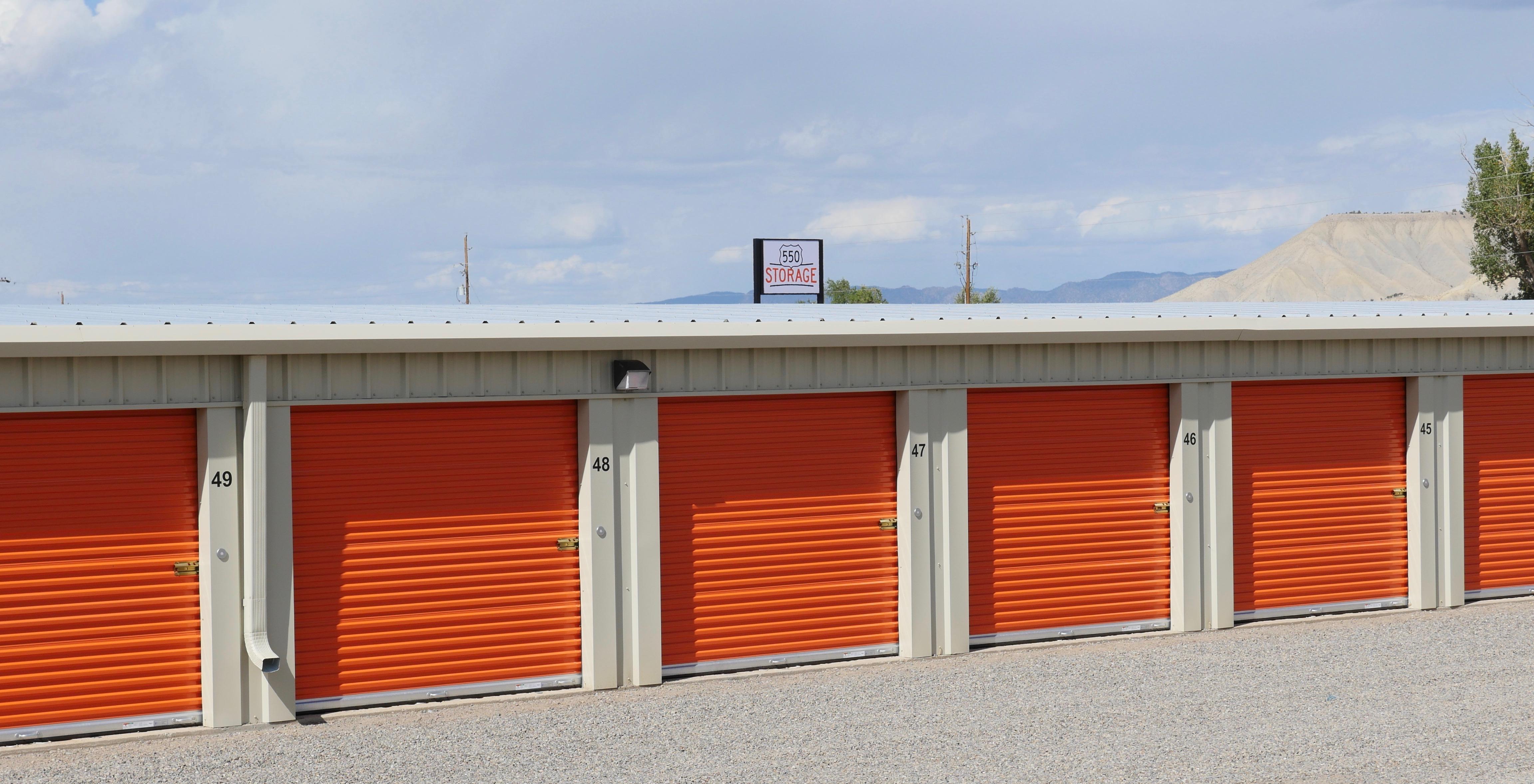 550 Storage Doors