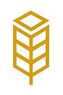 Wheat Box