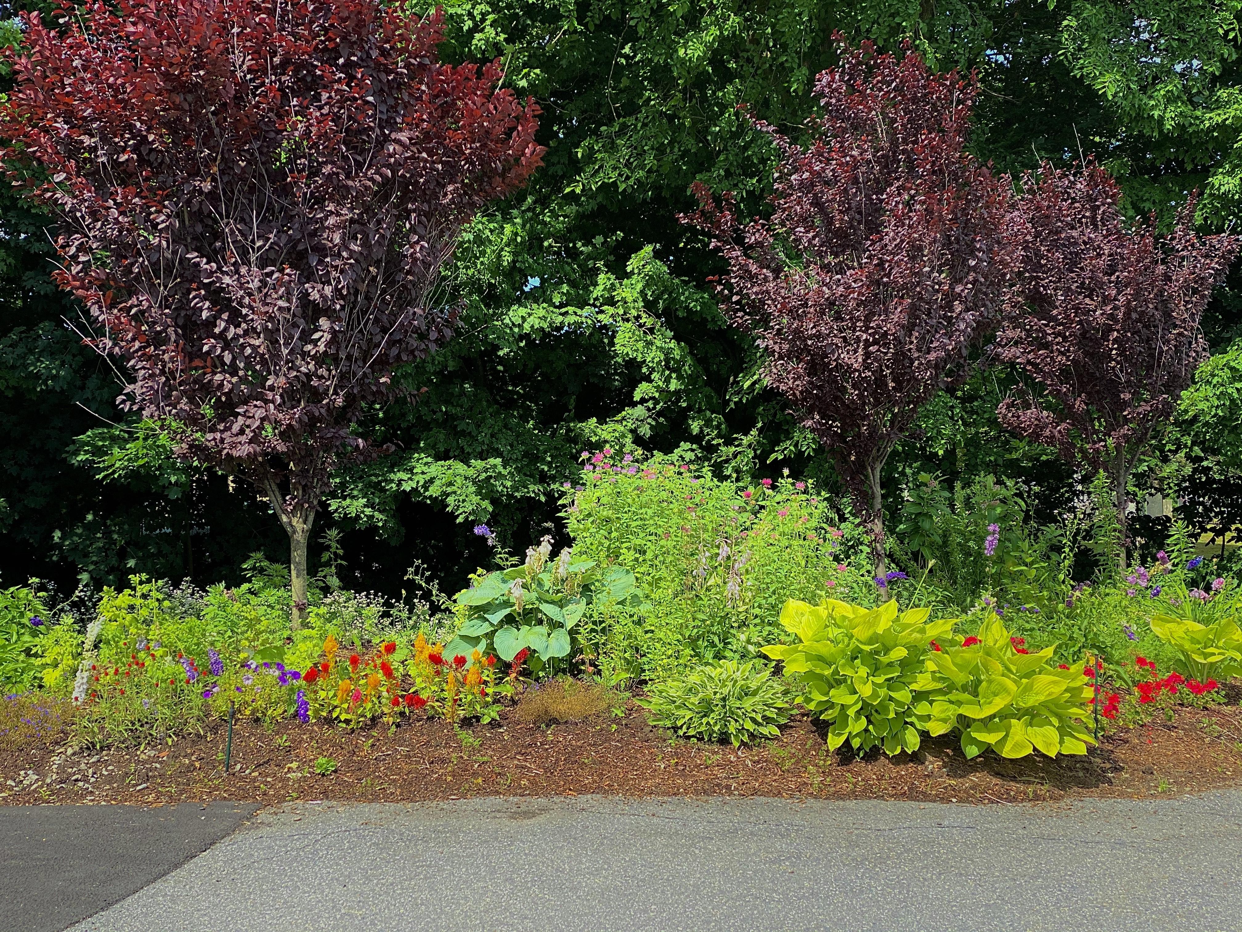 Garden Sterling, MA