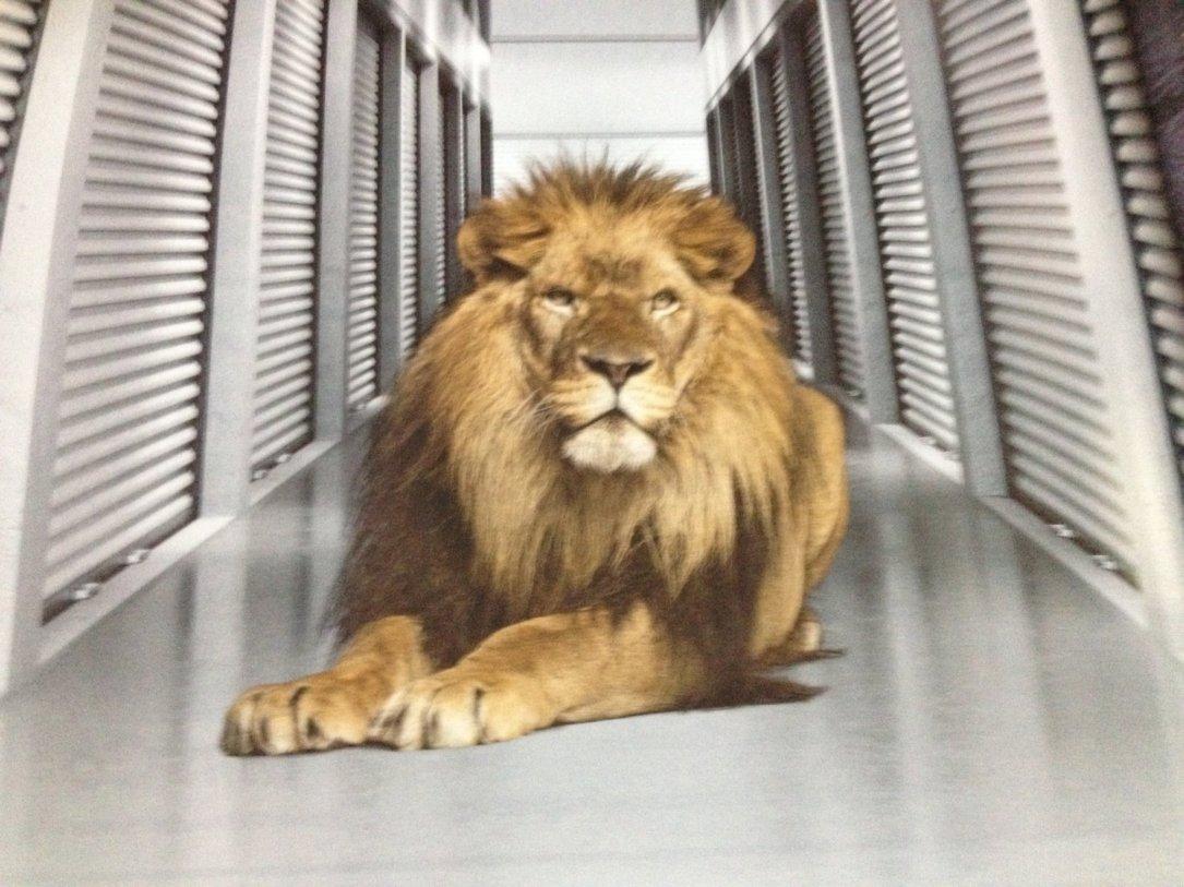 Pride Self Storage Facility
